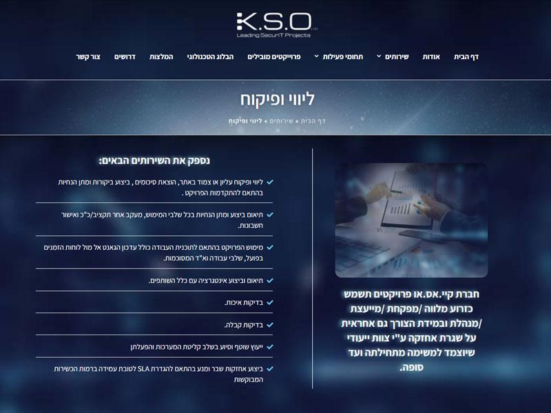 עיצוב אתר תדמית: דף פנימי באתר